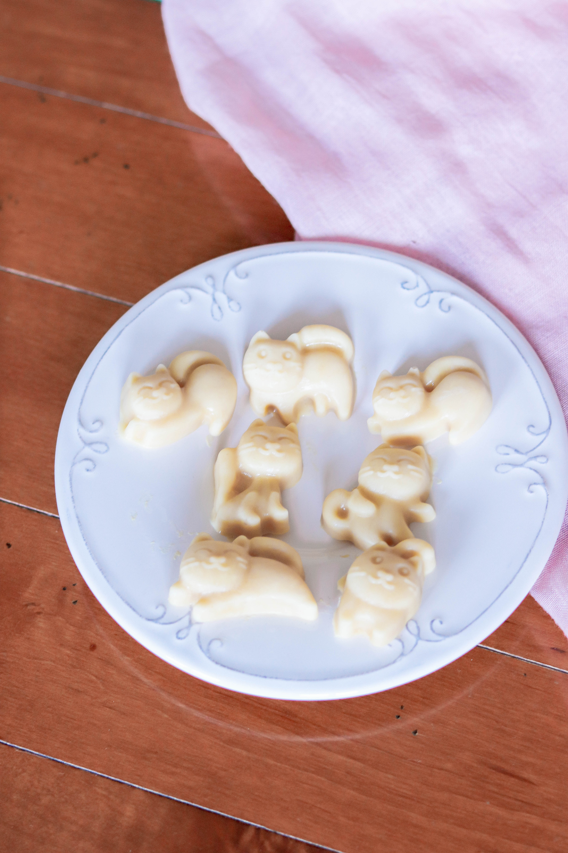receta helado para perro